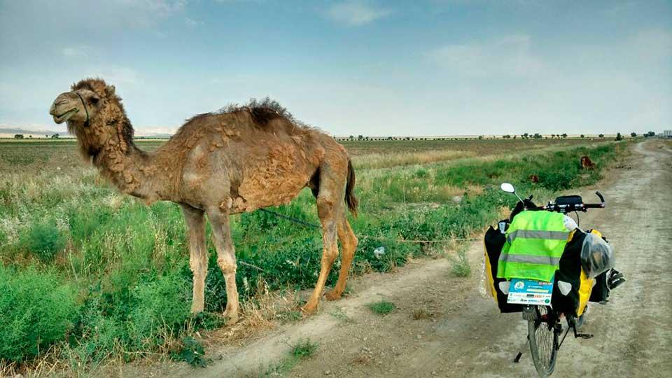 Perle-adentrándose-en-el-Asia-Central (5)